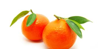 Mandarinky / Klementinky